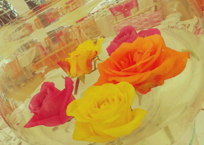 pink-and-orange-wedding-rose-rheda-retreat